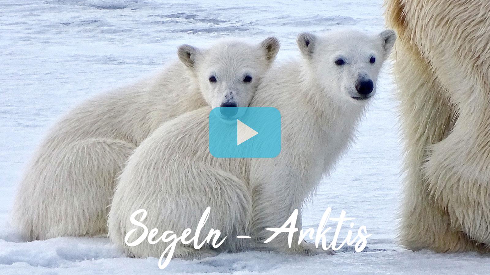 Segelreisen Polarregionen