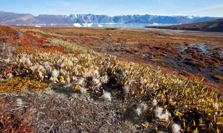 Malerischer Røde Fjord