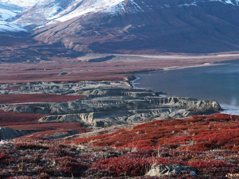 Atemberaubende Natur Grönlands