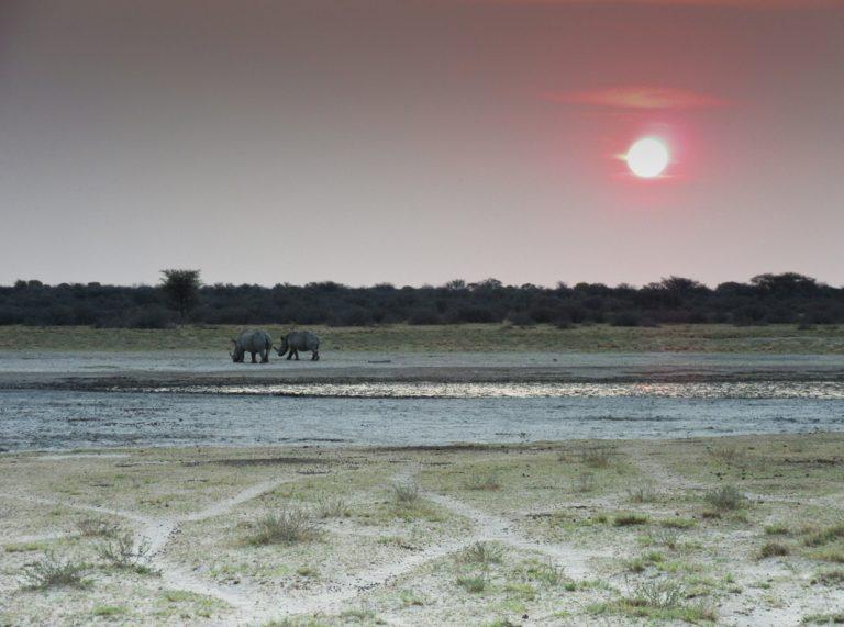 Sonnenuntergang in der Khama Rhino Sanctuary