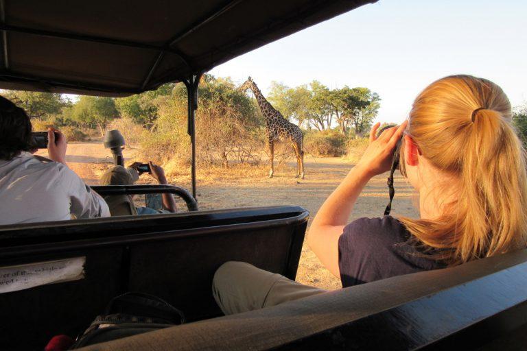 Auf Safari im Luangwa Nationalpark