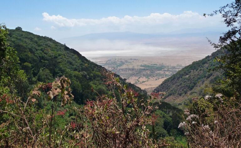 Ausblick in den Ngorongoro Krater