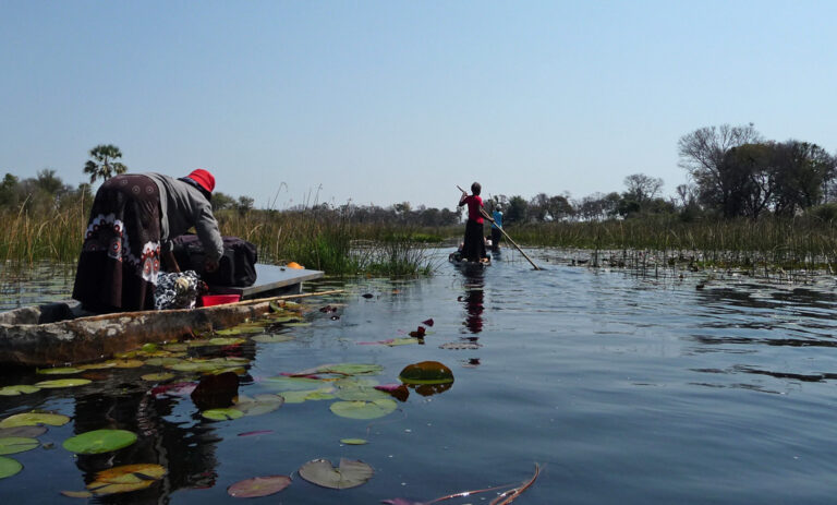 Mit Mokoros durch das Okavango Delta
