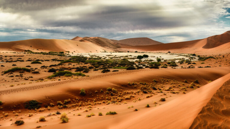 national-geographic-reise-krueger-nationalpark-und-namibia-traveljunkies