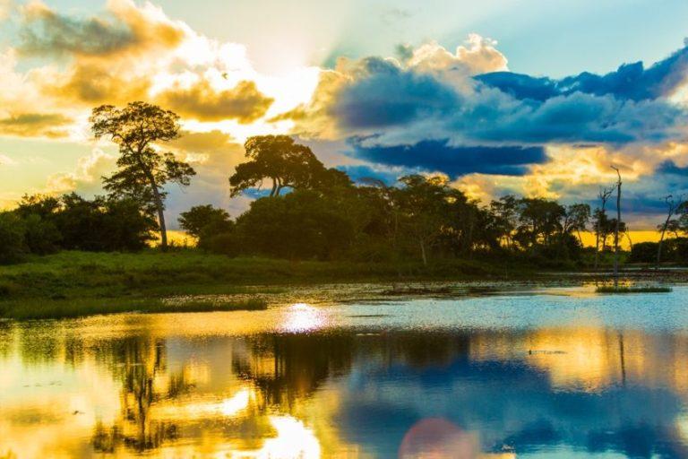 Abendstimmung im südlichen Pantanal