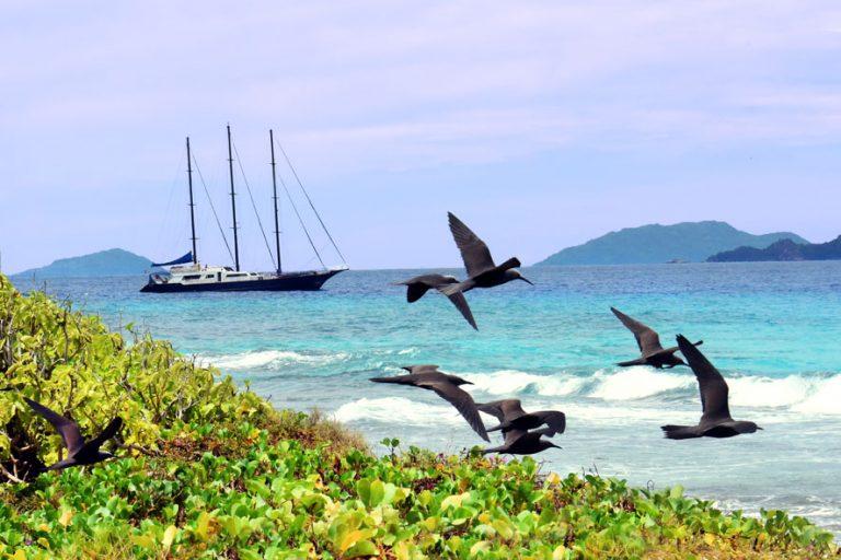 Ein Naturparadies für Vögel