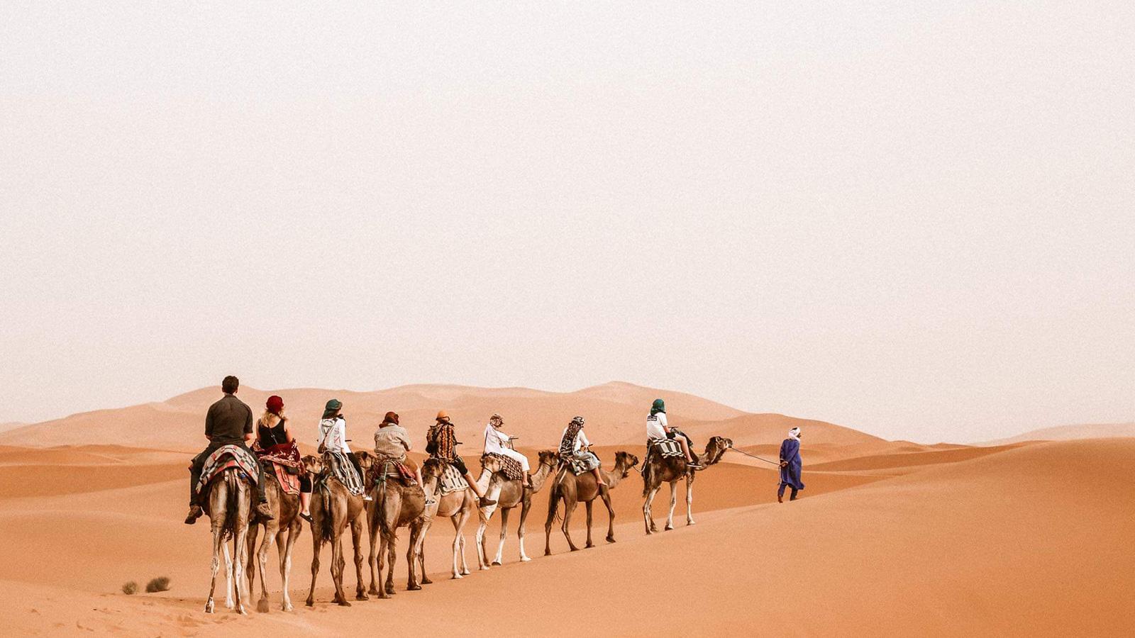 Marokko Erlebnisreise Von den Königstädten bis zur Sahara Wüste Gruppenreisen für junge Leute Marokko traveljunkies