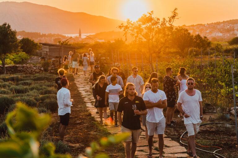 Weinprobe in malerischer Umgebung