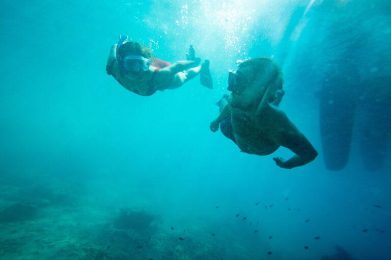 Auch unter Wasser gibt es viel zu entdecken