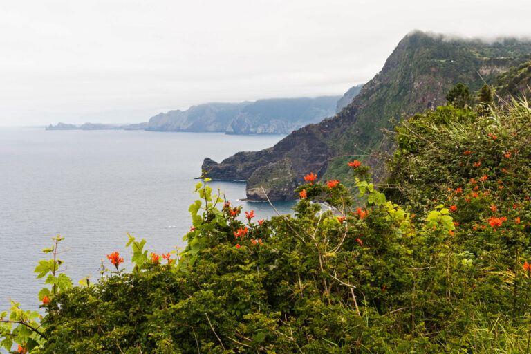Die Küste von Santana