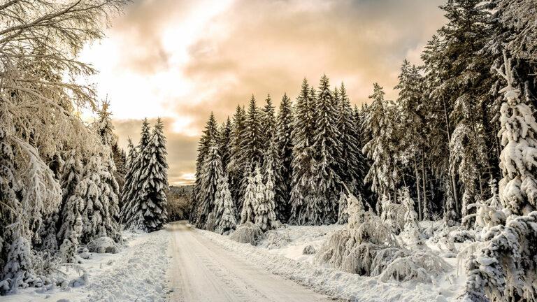 Winterurlaub in Lappland: Schweden als Winter Wonderland