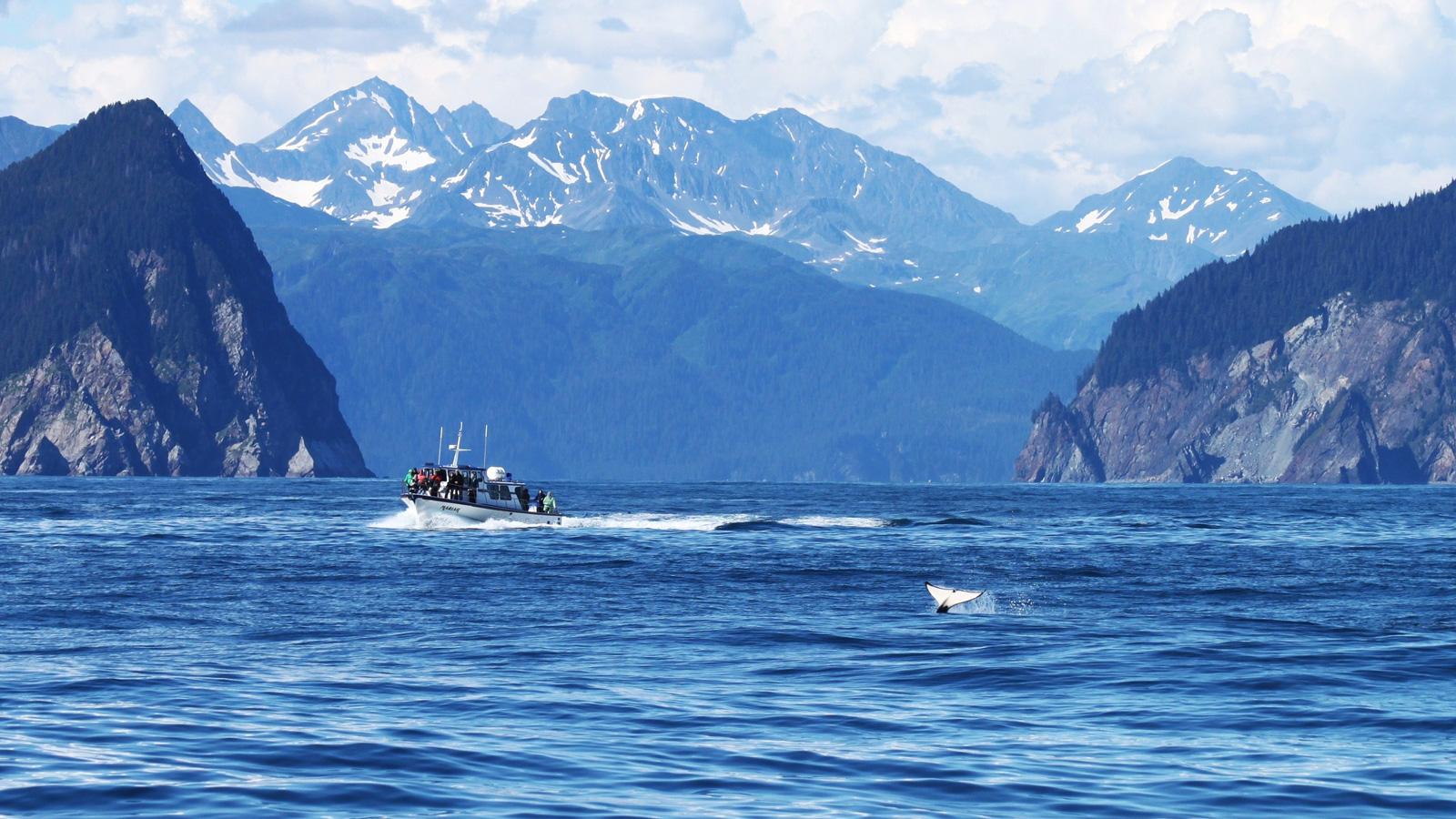 Abenteuerreise durch Alaskas Wildnis Gruppenreise Reise für junge Leute traveljunkies