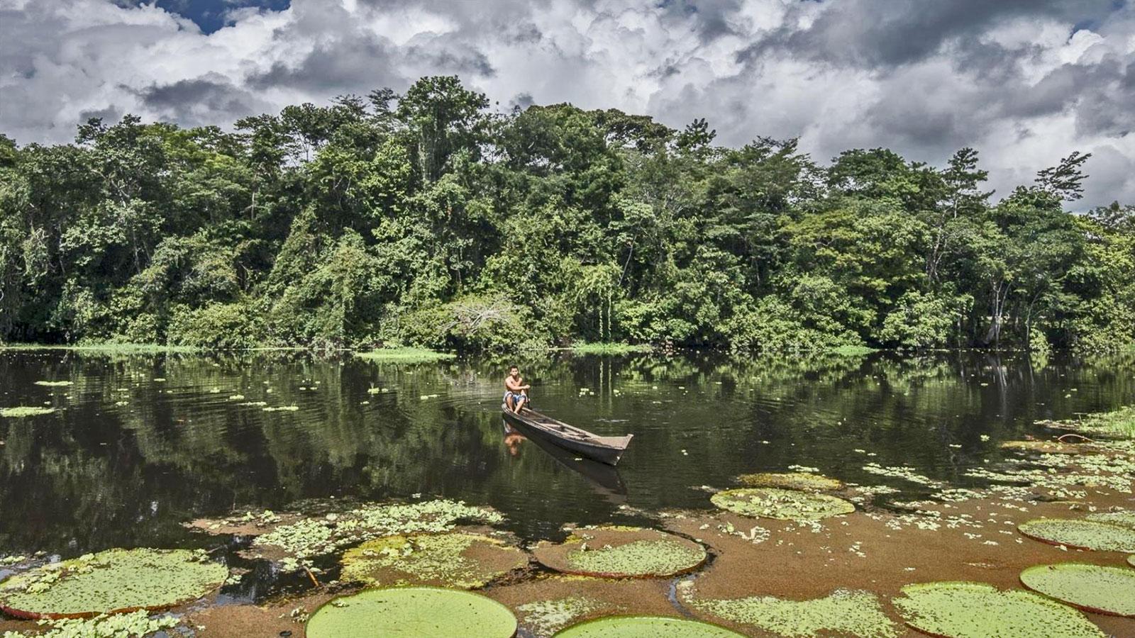 Amazonas Brasilien aktive Erlebnisreise Brasilien traveljunkies