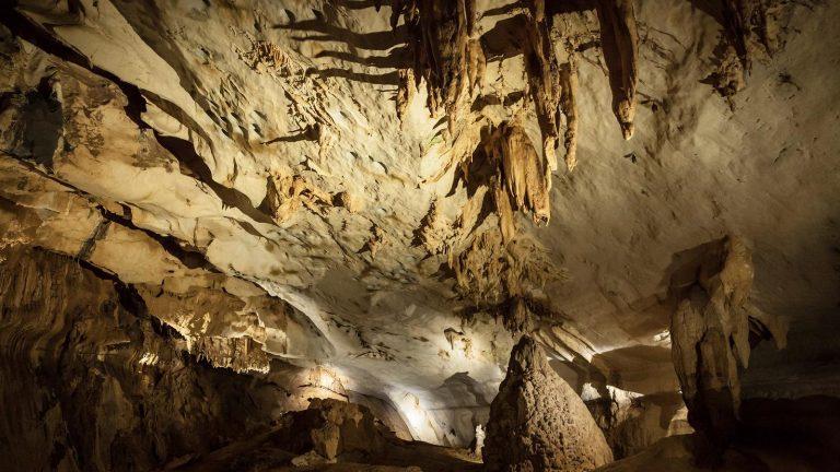 Deer Cave im Gunung Mulu Nationalpark Borneo individuell reisen traveljunkies