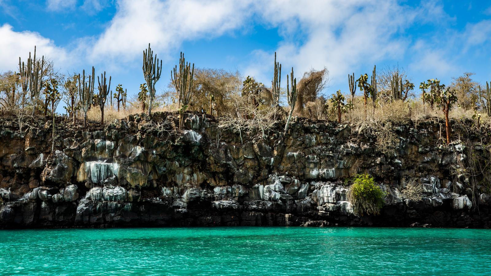 Galapagos Inseln Aktivreise in der Gruppe traveljunkies
