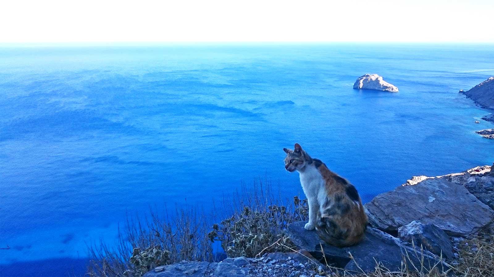 Griechenland Abenteuer Segeln von Mykonos nach Santorini Segeltörn Reisen für junge Leute traveljunkies