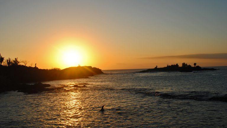 Hochzeitsreise Ecuador & Galapagos Fliiterwochen Südamerika Honeymoon mal anders traveljunkies