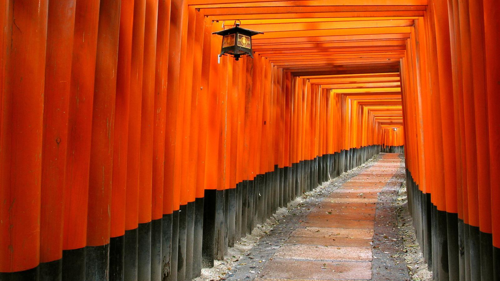 Japan Erlebnisreise in der Gruppe traveljunkies