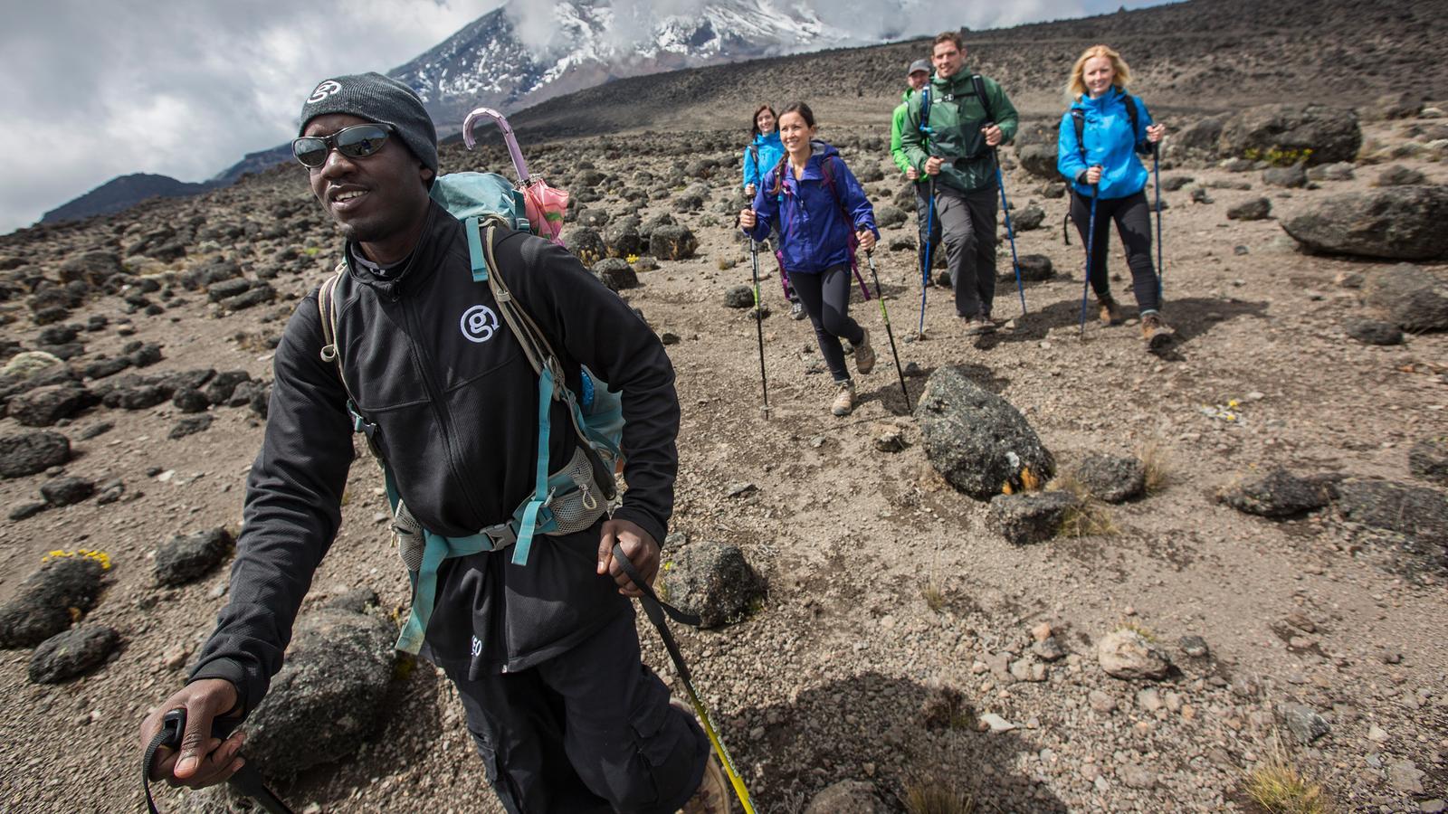 Kilimandscharo - Lemosho Route Gruppenreise Tansania traveljunkies