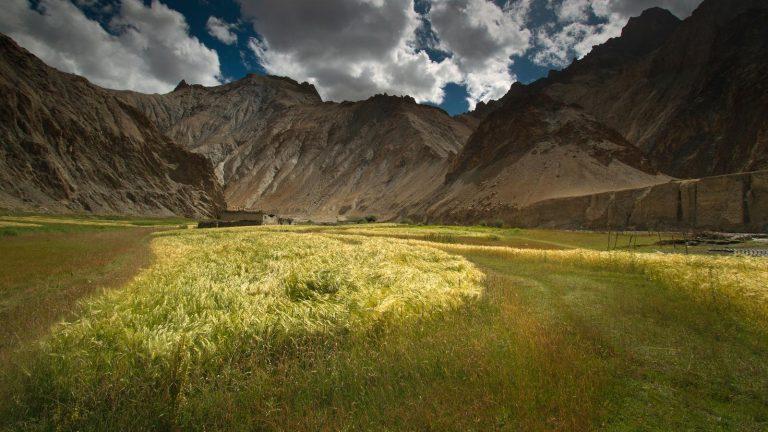 Ladakh Trekking in der Gruppe Indien Aktivreise traveljunkies