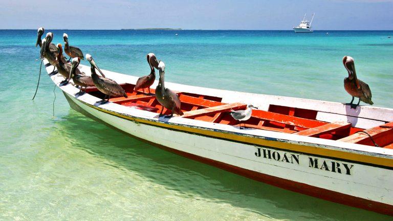 Schwimmen, tauchen, schnorcheln auf Los rpques. Sonne, Strand und Meer, Südamerika Venezuela traveljunkies