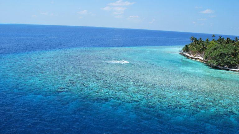 Malediven Segeltörn Segeln auf den Malediven Segelboot traveljunkies
