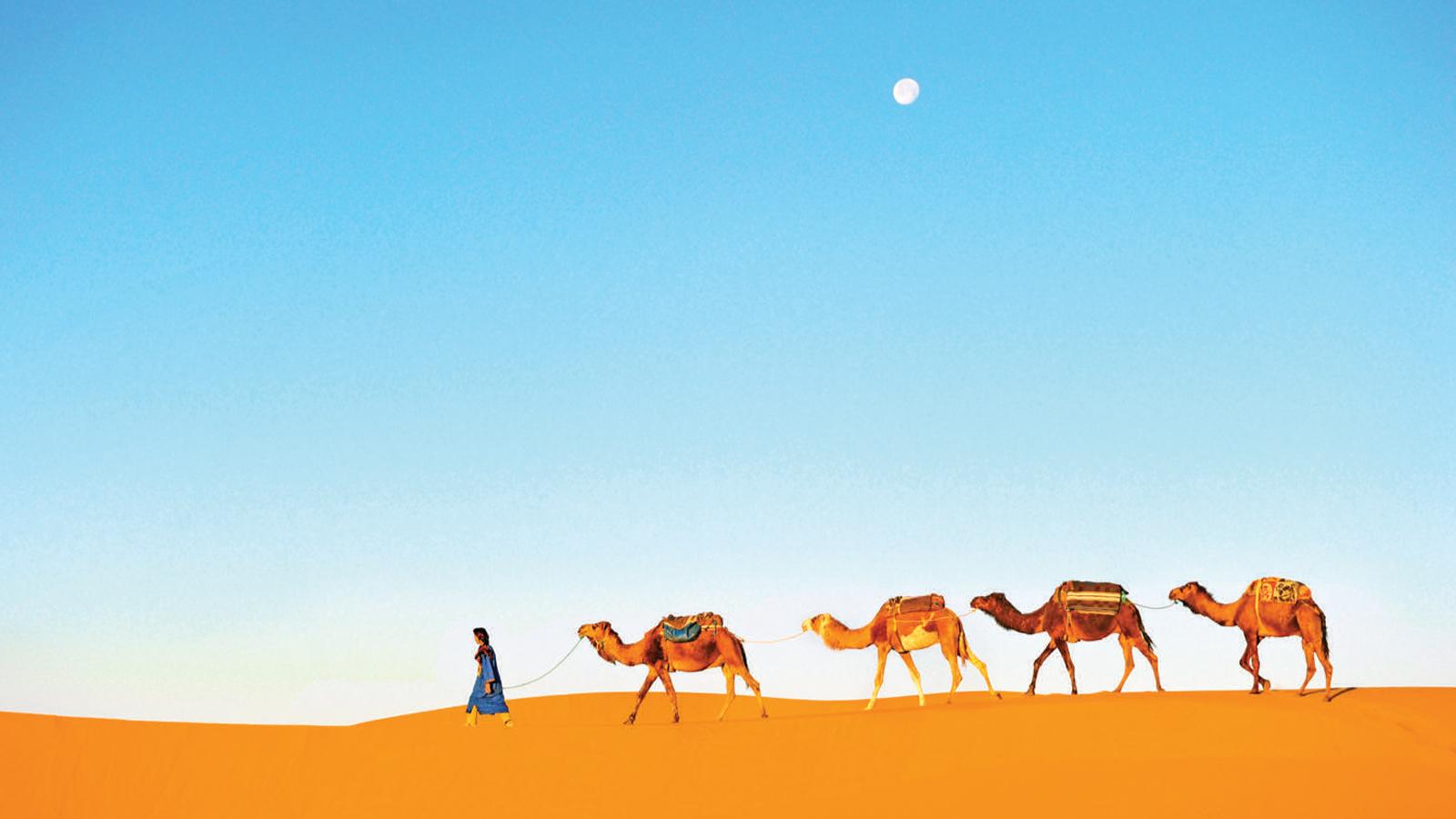 Marokko: Sahara Wüsten Abenteuer