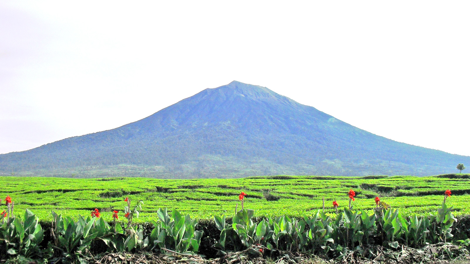 Mount Kerinci Vulkan im Lake Mount Seven Nationalpark Sumatra Expeditionsreise traveljunkies