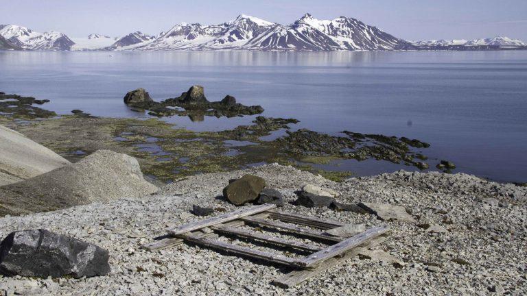 Nord-Spitzbergen Arktischer Sommer II Expedition Arktik Segeln traveljunkies