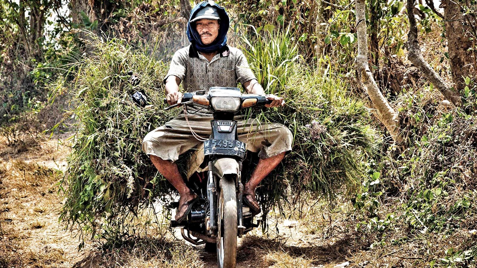 Reisen Indonesien individuell traveljunkies