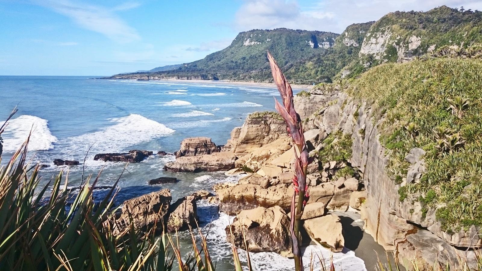 Reisen für junge Leute Neuseeland traveljunkies