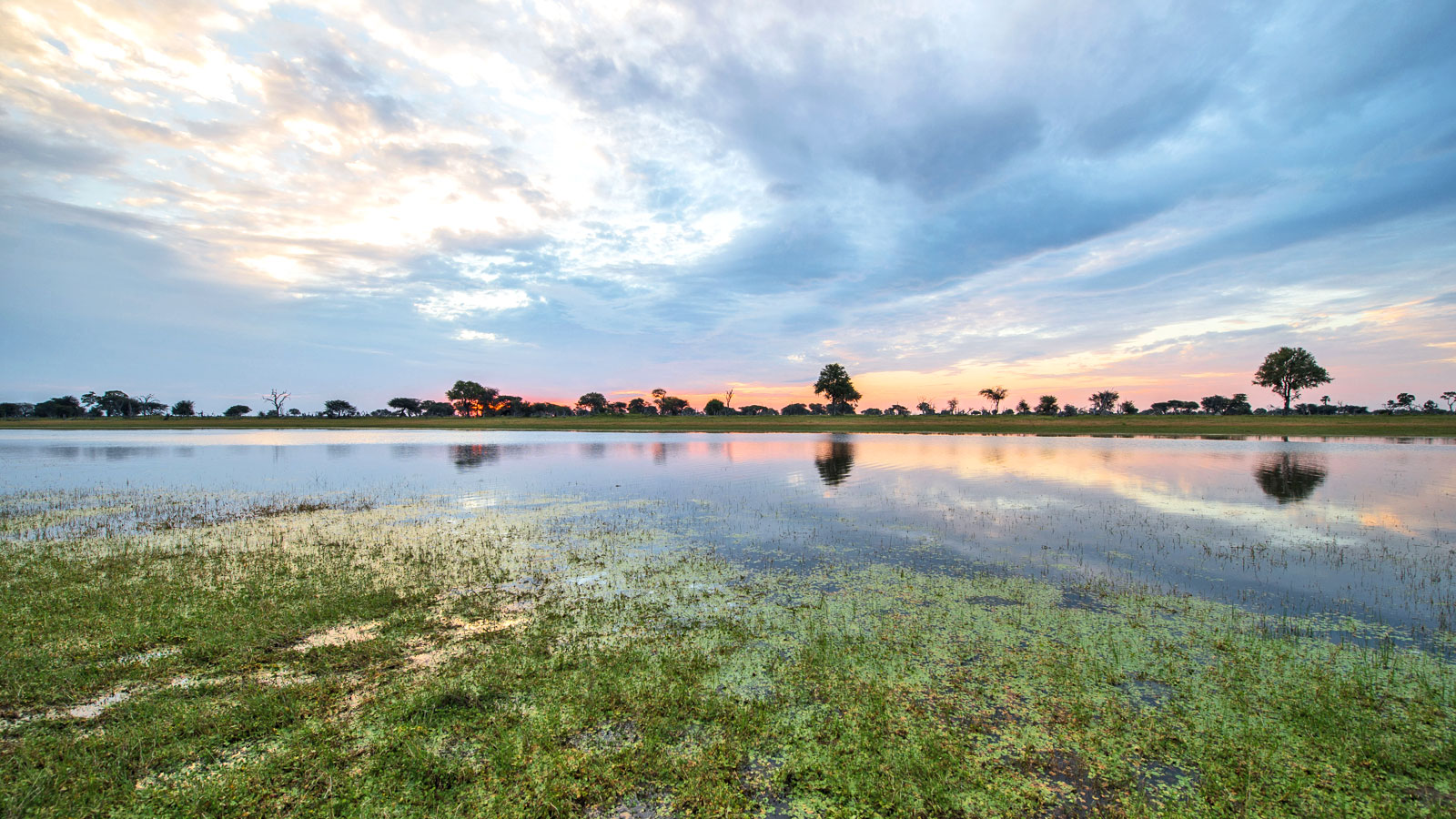 Safari Okavango Delta Botswana Erlebnisreise in Kleingruppe travelejunkies