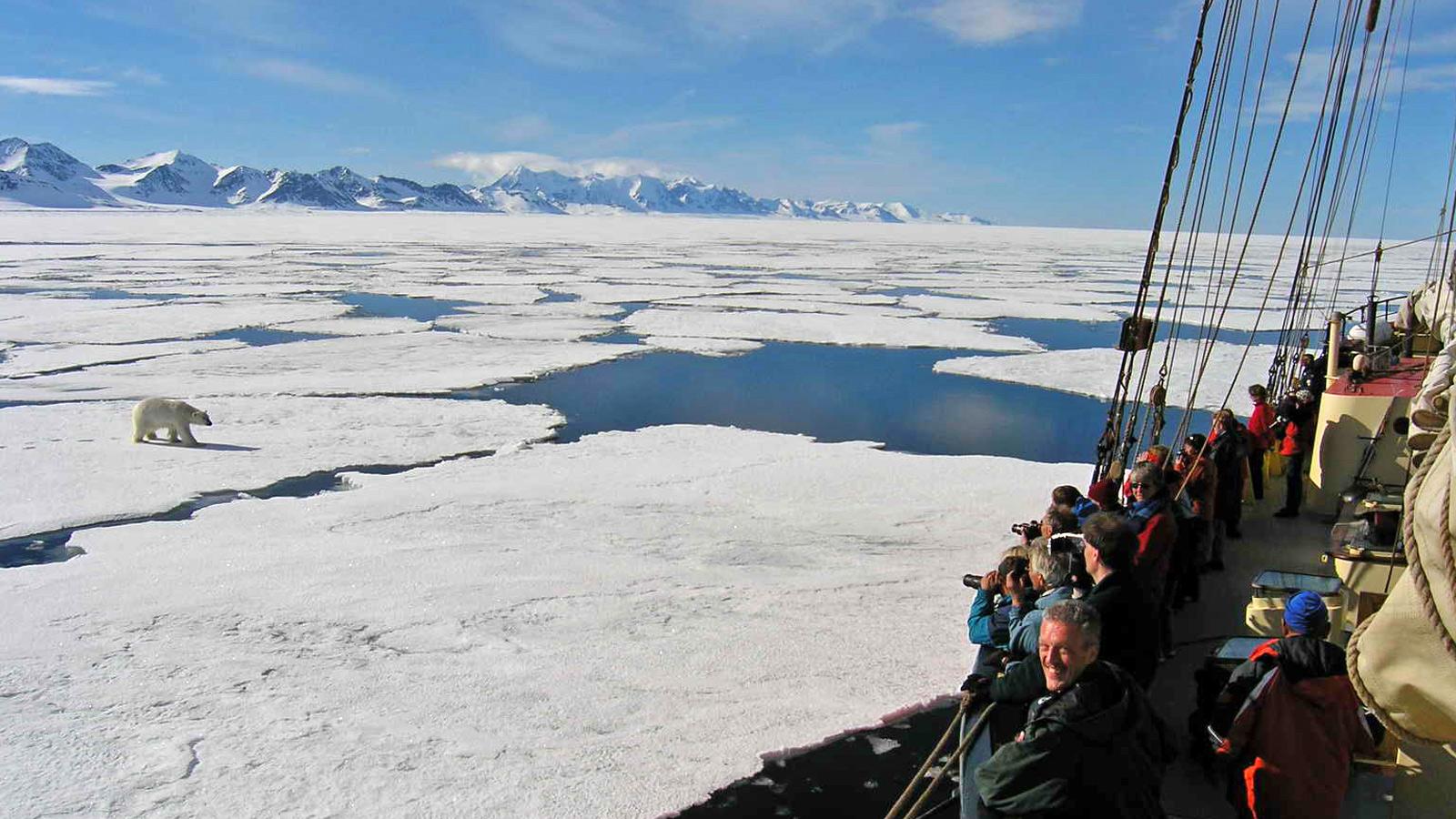 Segel-Expediiton Spitzbergen in der Arktis mit Eisbären am Nodpol traveljunkies