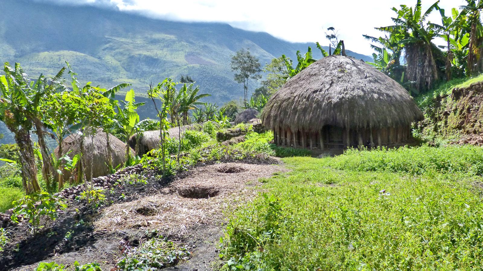 West Papua Dani Dogum Trekking im Baliem Valley Indonesien Expeditionsreise traveljunkies