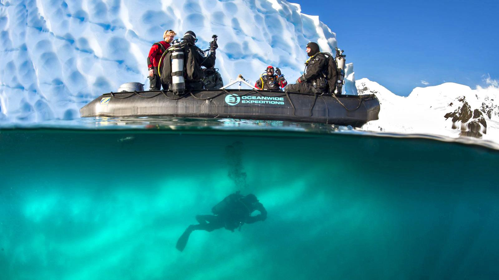 Spitzbergen Unterwasserwelt in der Arktis am Nordpol traveljunkies
