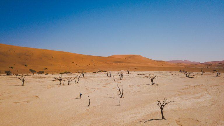 traveljunkies Entdeckungsreise Namibia Victoriafälle Namib-Wüsten Landschaft Dünen National Geographic Gruppenreise Afrika Etosha Nationalpark
